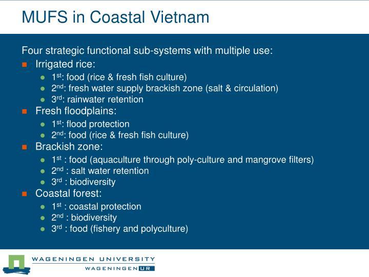 MUFS in Coastal Vietnam