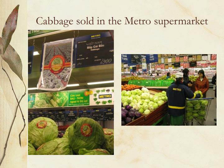Cabbage sold in the Metro supermarket