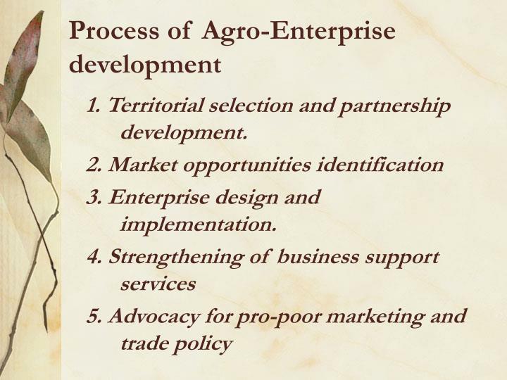 Process of Agro-Enterprise development