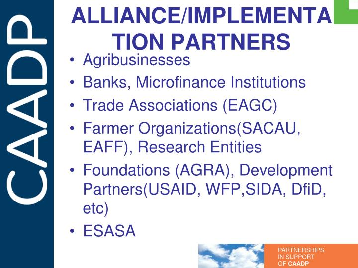 ALLIANCE/IMPLEMENTATION PARTNERS