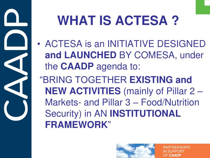 What is actesa