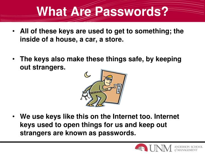 What Are Passwords?