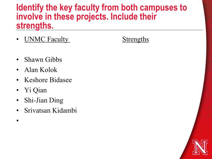 Identify the key faculty from both campuses to involve in these projects. Include their strengths.