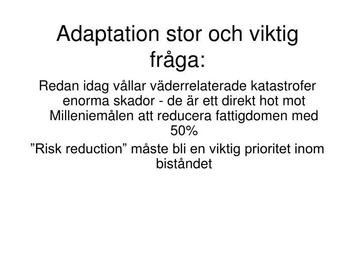 Adaptation stor och viktig fråga: