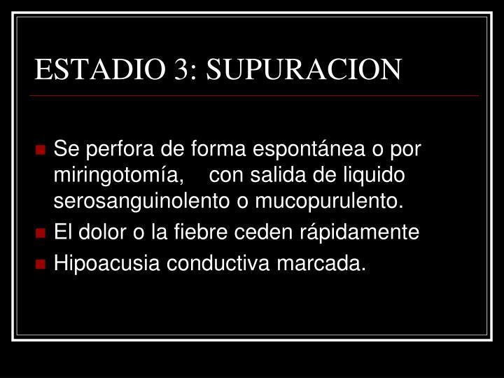 ESTADIO 3: SUPURACION