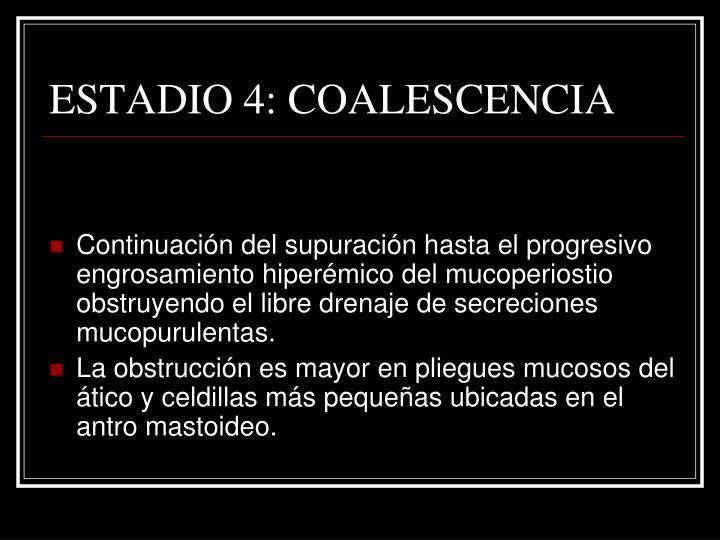 ESTADIO 4: COALESCENCIA
