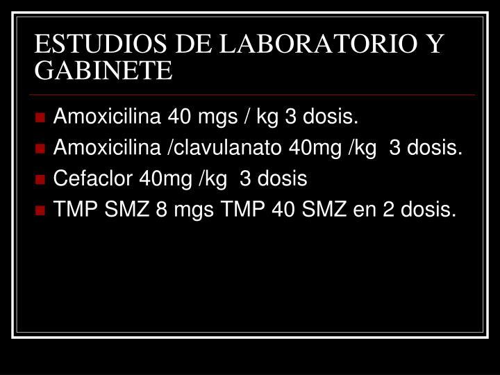 ESTUDIOS DE LABORATORIO Y GABINETE