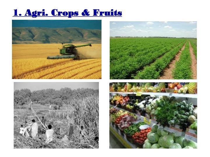 1. Agri. Crops & Fruits