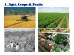 1 agri crops fruits
