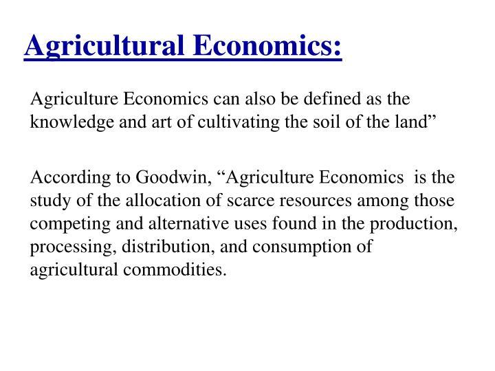 Agricultural Economics: