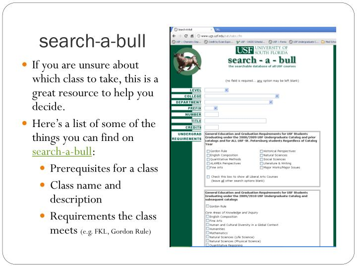search-a-bull