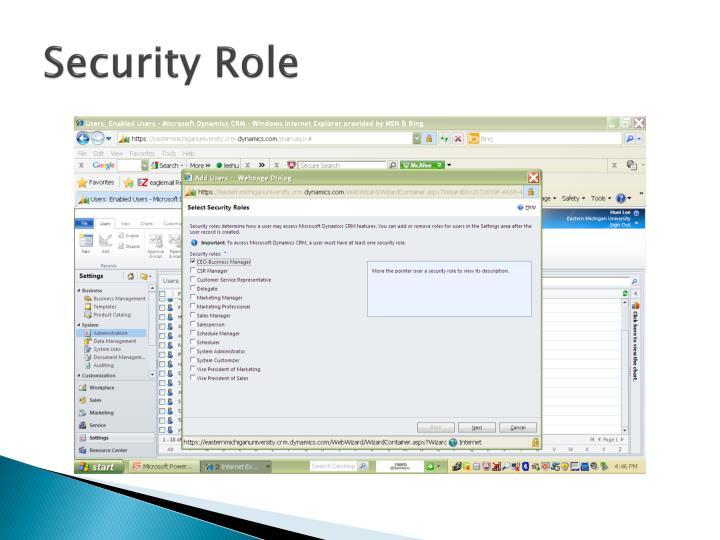 Security Role