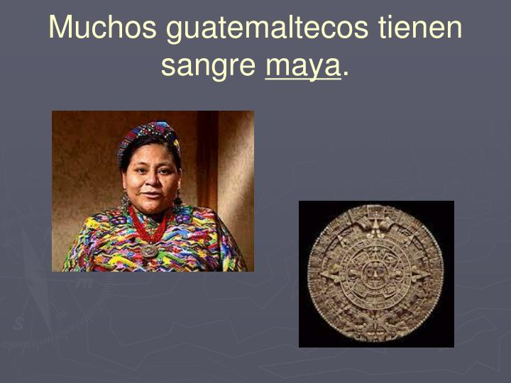 Muchos guatemaltecos tienen sangre