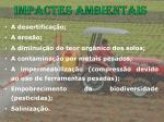 impactes ambientais