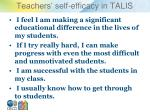 teachers self efficacy in talis