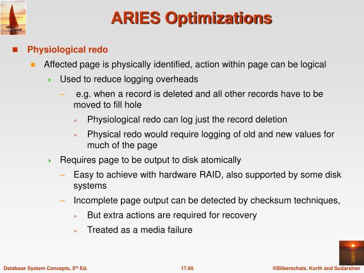 ARIES Optimizations