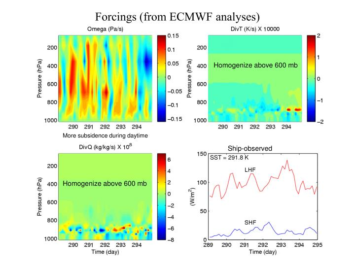 Forcings (from ECMWF analyses)