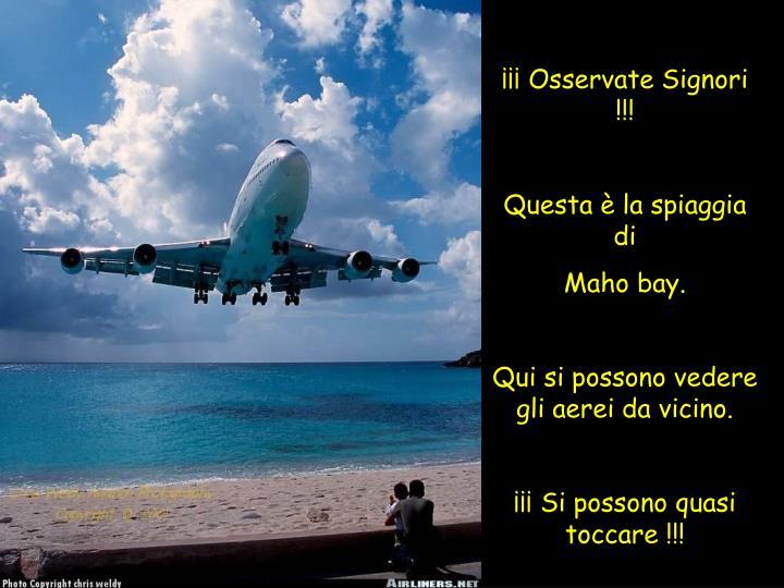 ¡¡¡ Osservate Signori !!!