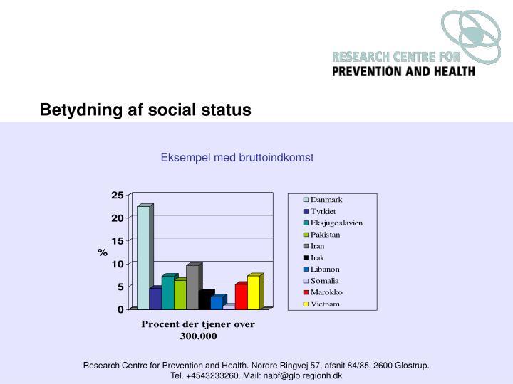 Betydning af social status