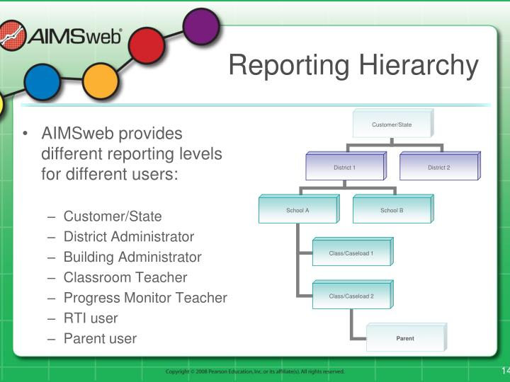 Reporting Hierarchy