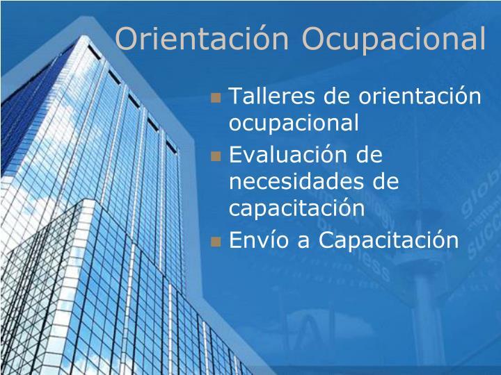 Orientación Ocupacional