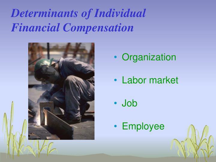 Determinants of Individual Financial Compensation