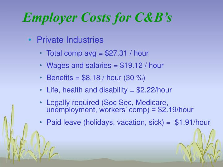 Employer Costs for C&B's