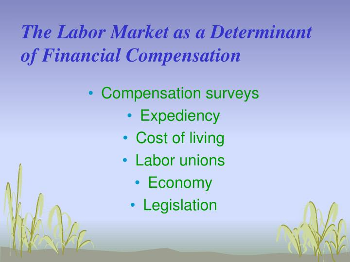 The Labor Market as a Determinant of Financial Compensation
