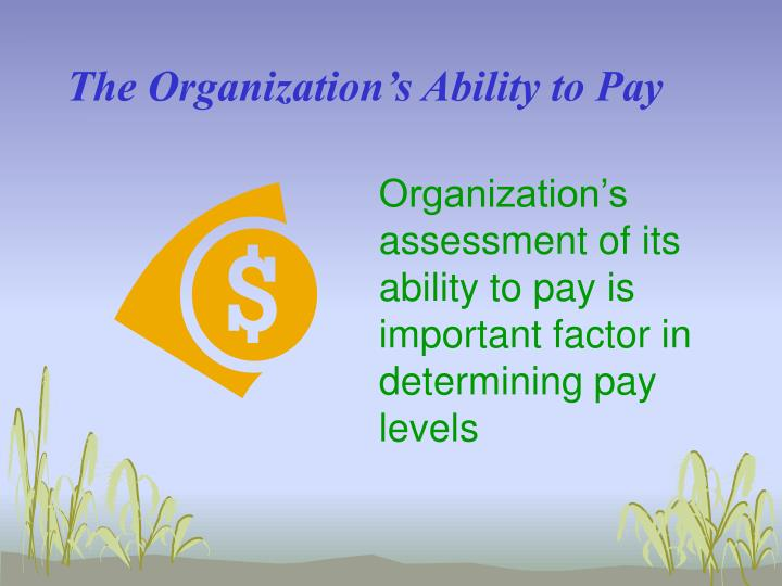 The Organization's Ability to Pay