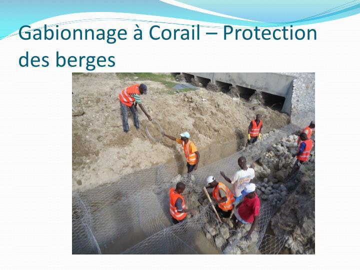 Gabionnage à Corail – Protection des berges