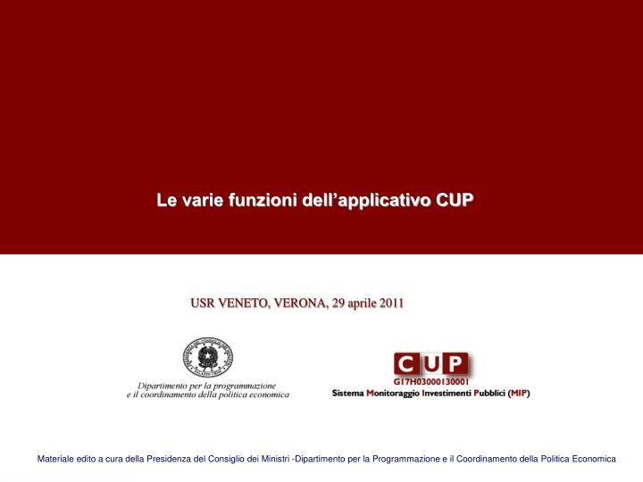 Le varie funzioni dell'applicativo CUP