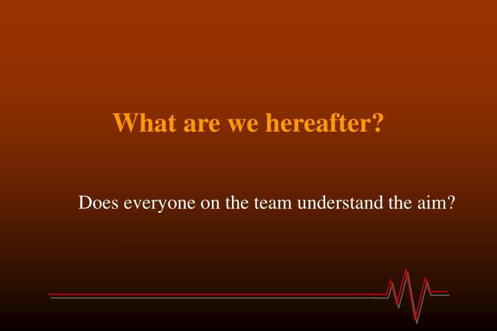 What are we hereafter?