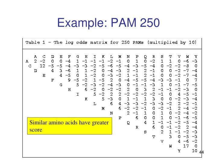 Example: PAM 250