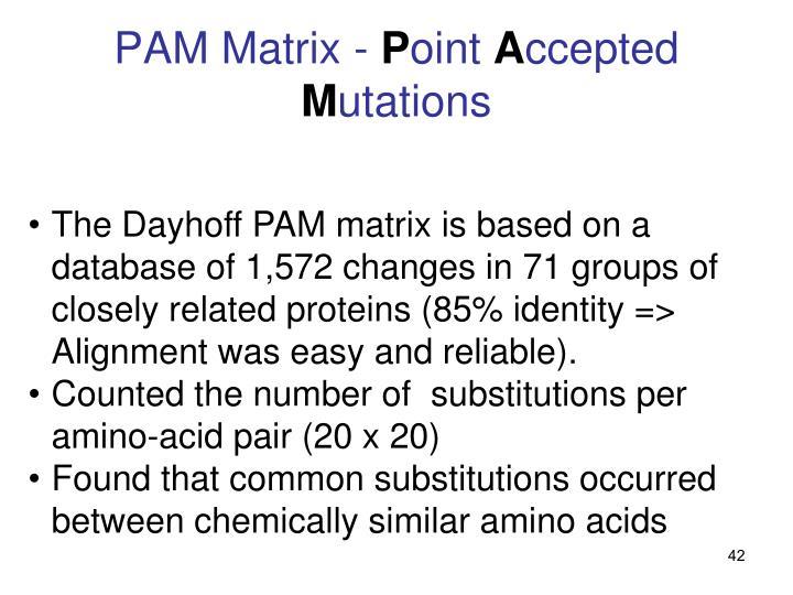 PAM Matrix -