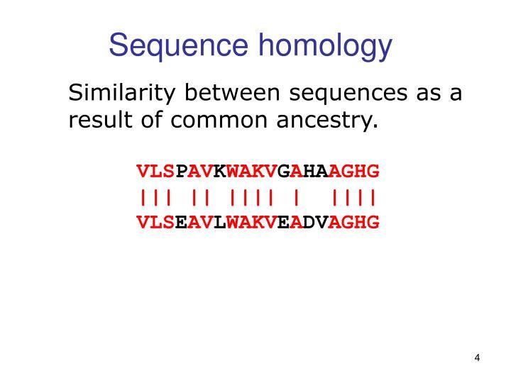 Sequence homology