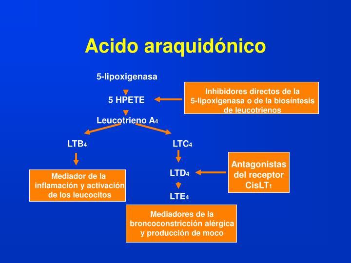 Acido araquidónico