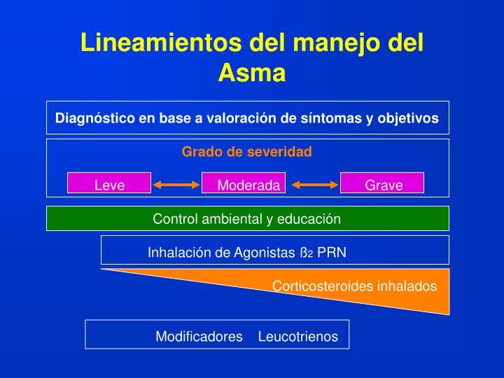 Lineamientos del manejo del Asma