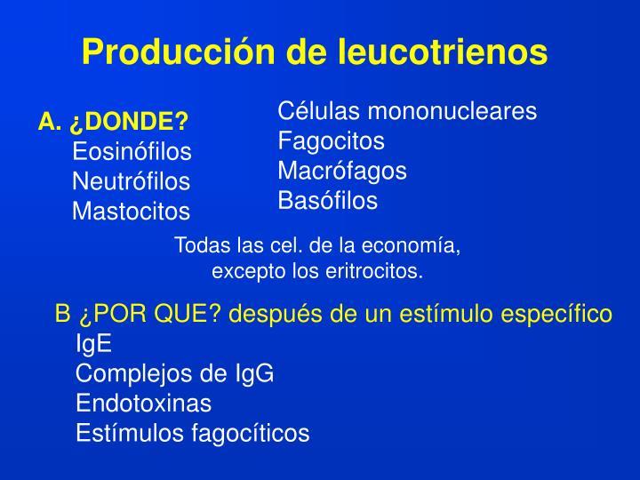 Producción de leucotrienos
