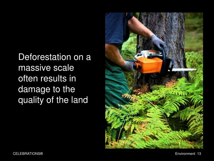 Deforestation on a massive scale often results in damage to the quality of the land
