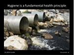 hygiene is a fundamental health principle
