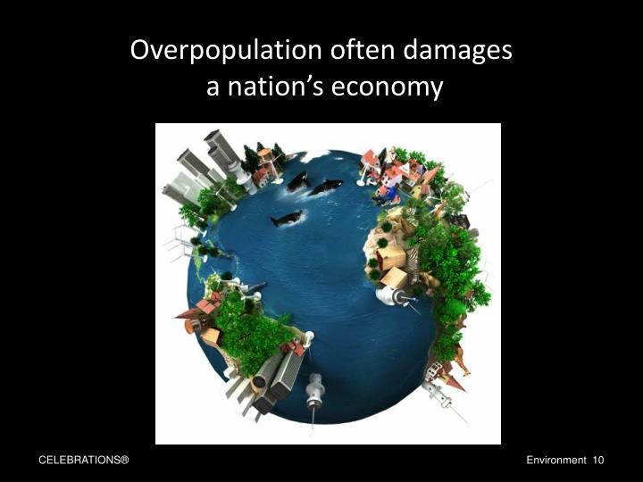 Overpopulation often damages