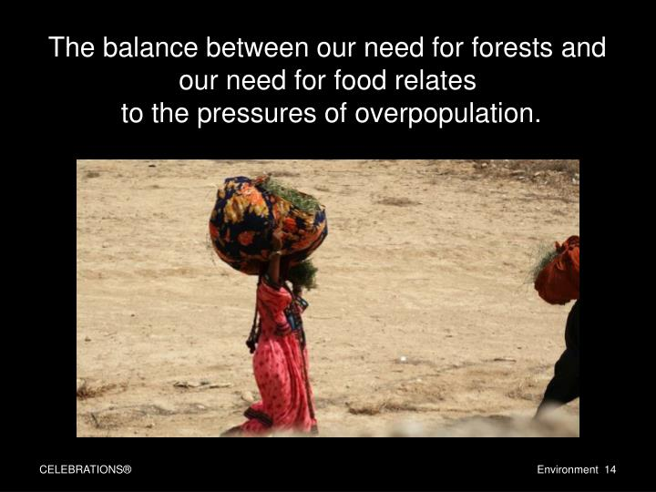 The balance between our need for forests and our need for food relates