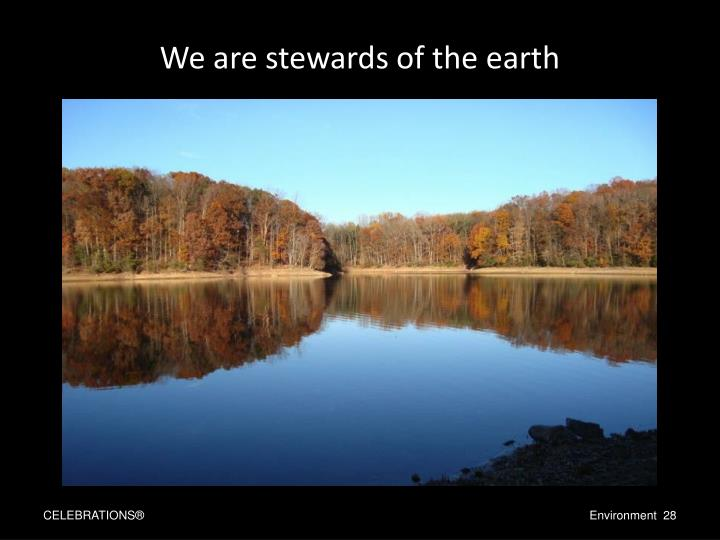 We are stewards of the earth