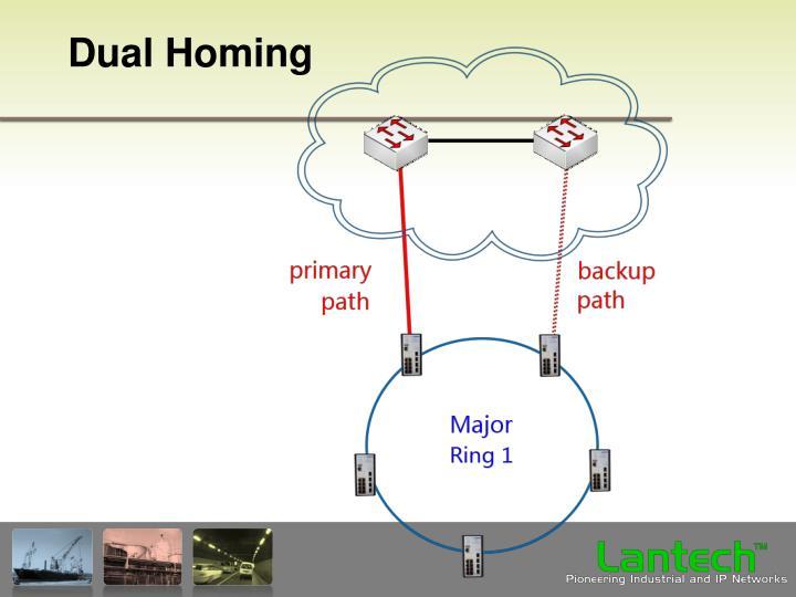 Dual Homing