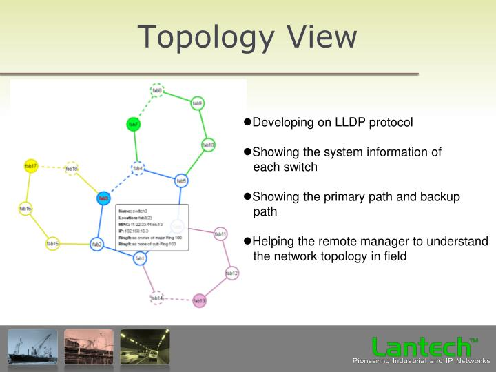 Topology View