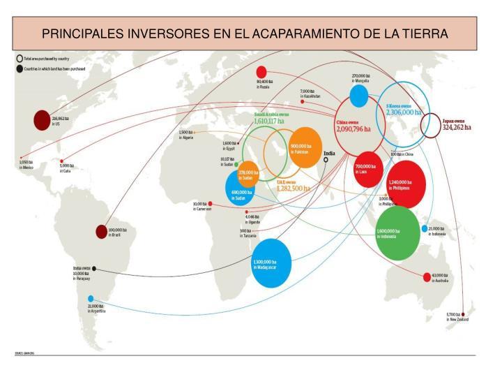PRINCIPALES INVERSORES EN EL ACAPARAMIENTO DE LA TIERRA