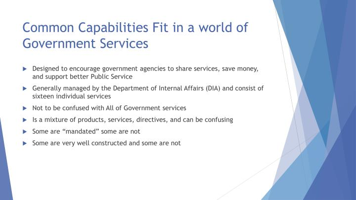 Common Capabilities Fit in a world of Government Services