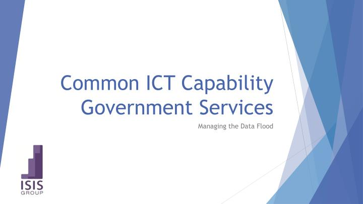 Common ICT Capability Government Services