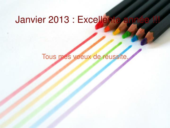 Janvier 2013 : Excellente année !!!