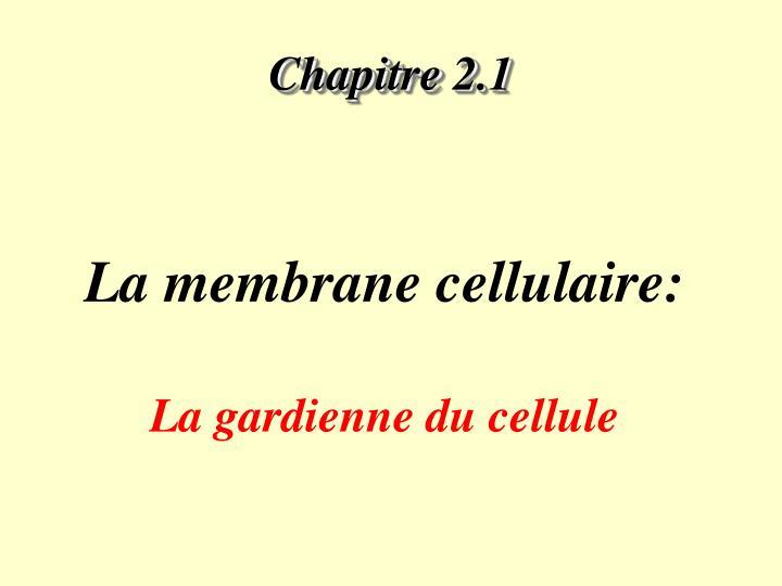 Chapitre 2.1